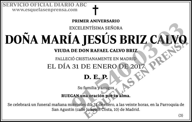 María Jesús Briz Calvo